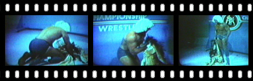 http://midatlanticwrestling.net/mulligan/sections/hat_robe/images/filmstrips/flair_agony.jpg